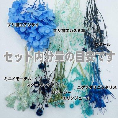 画像1: 【A】ハーバリウム花材8種セット(ブルー系)
