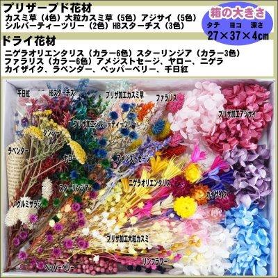画像1: 【A】ハーバリウム花材セット