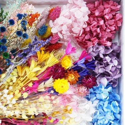 画像2: 【A】ハーバリウム花材セット