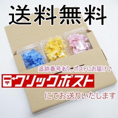 画像2: 【特】プリザアジサイ6パックセット
