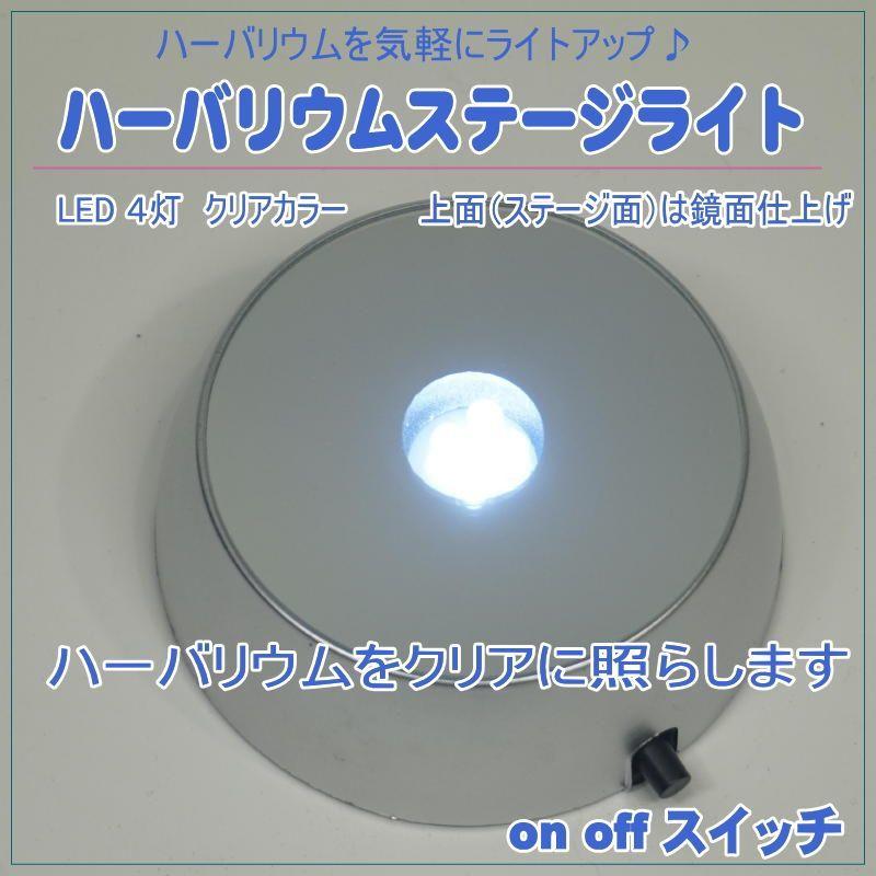 画像1: 【A】ハーバリウムステージライト クリア4灯LED (1)